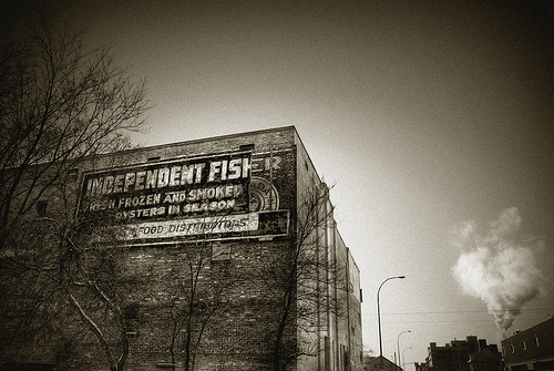 Independent Fish